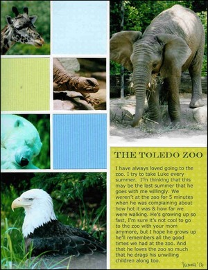 The_toledo_zoo_cardstock_only_small